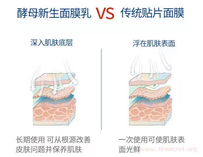 TST活酵母面膜